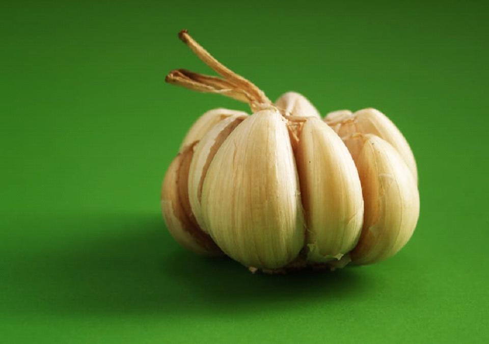 Going Gaga over Garlic
