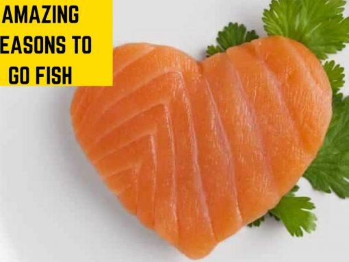 Amazing Reasons to go Fish